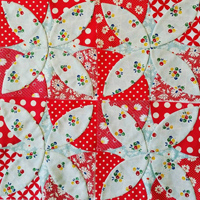 Berry Bliss Quilt Blocks